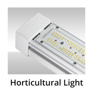 Horticultural Light